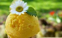 Helado Casero de Limón Sin Lactosa con Heladera